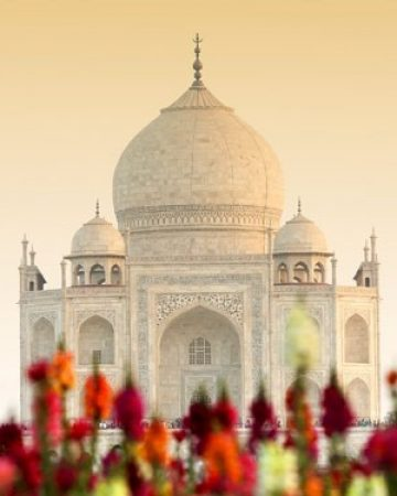 India Maharadja Reis